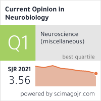 Current Opinion in Neurobiology