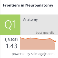 Frontiers in Neuroanatomy