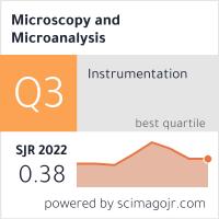 Microscopy and Microanalysis
